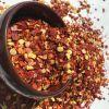 High quality paprika seeds
