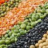 Quality Red Lentils, Green Lentils, Yellow Lentils