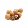 Best Quality 100% Natural Betel Nut Original from Indonesia for Wholesale Quantity