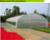 Single Tunnel Greenhouse
