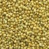 Sell Yellow millet
