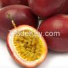 FRUITS: Dragon fruit, Rambutan, Mango, Lime, Jackfruit, Passion fruit, Banana, Coconut, Pomelo, Pineapple