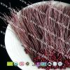 Organic red bean/Adzuki spaghetti exporter to European countries and US market