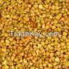 2015 Crop Certified Organic Roasted Buckwheat