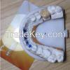 Customize Dental Restoration NexxZr Sagemax Zirconia Crown