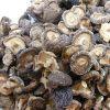 Dried Mushrooms _DRIED MUSHROOMS