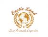 Exotic Land - Egypt Live Animals Exporter