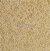 Suppliers QUINOA SEED Top quality-Red and White Quinoa Seed