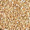Top Quality Buckwheat