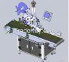 Automatic Adhesive Label Machine