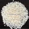 sell PBT Granules