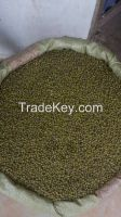 Raw Cashew Nuts, Green Mung Beans, Sesame seeds from Tanzania