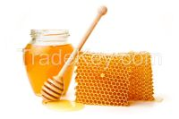 honey and bee keeping necessities