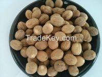nutmeg extract/nutmeg powder/nutmeg seed