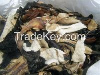 Top Quality Donkey and Cow Hides