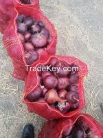 Shattering prices Egyptian fresh onion  All size  and color (( attn of importers or buyers))