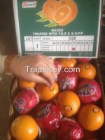 Shattering prices Egyptian fresh orange valencia All size (( attn of importers or buyers))