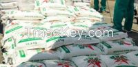 QUALITY WHITE AND YELLOW  MAIZE MEAL