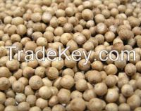 Best Quality White Pepper