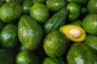 Fresh Hass/Fuerte Avocado