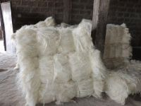 A Grade White Sisal Fiber 100% Natural