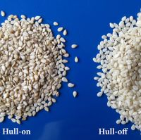 Natural & Hulled Sesame seeds