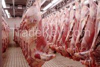 Frozen Halal Boneless Buffalo Meat