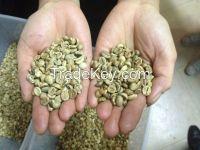 Arabica Coffee High Quality