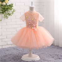 Girl Party Dresses Elegant Children Dress Girls Clothes In Stock   Wholesale Prices Customise Order Accept