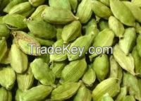 Top Quality Cardamum Seed