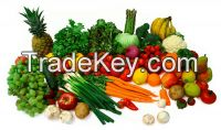 Fresh Fruits And Vegetables Exporters