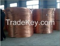 1000MT copper wire scrap selling
