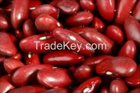 new crop red kidney beans price