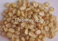 White Maize/ Corn For Sale Good Price