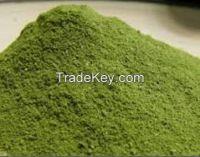 Moringa Tea, Moringa Capsules, Moringa Powder, Moringa Leaf Powder
