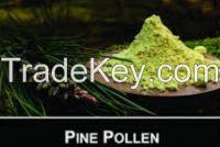 pine poling powder