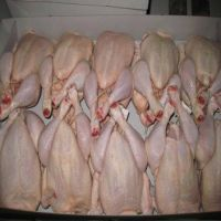 Frozen Whole Chicken and Parts / Gizzards / Thighs / Feet / Paws / For Sale