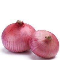 Round fresh red onions fresh cheap onion