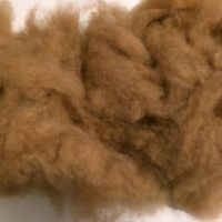 Camel Hair brown 18.5mic/32-34mm