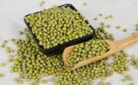 Favorable price of green mung bean