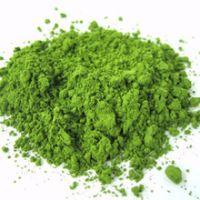 High Quality Natural Matcha powder / Organic Matcha Green Tea Powder / Matcha Green Tea Powder