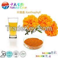 natural lutein pigment manufacturer