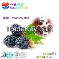 natural colour mulberry red food additives pigment