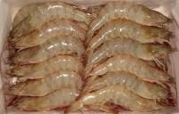 Frozen Pud/P&D Shrimps/Prawns