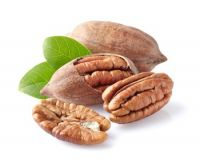 Pecan Nut Roasted Salted Pecans/Raw Pecan Nuts With Shell