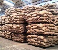 "Grade ""AA"" Coffee Beans/Robusta Coffee/Arabica Coffee Bean"