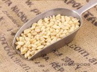 Bulk Raw Pine nuts available