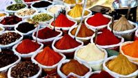atest Season Hot Red Chillies from Single Spices & Herbs Supplier