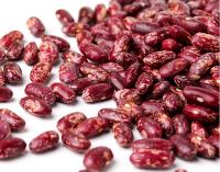Wholesale 15% Moisture Dried Purple Speckled Kidney Beans