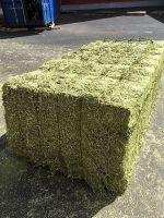 DEHYDRATED ALFALFA HAY VERY GREEN COLOR